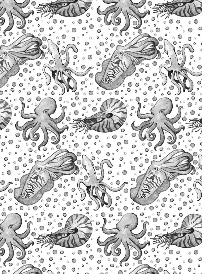 Octopus, squid, cuttlefish naut - svaeth | ello