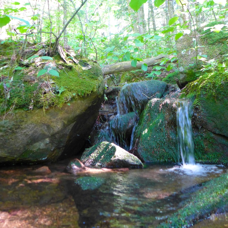 waterfall notice - dalespiry | ello
