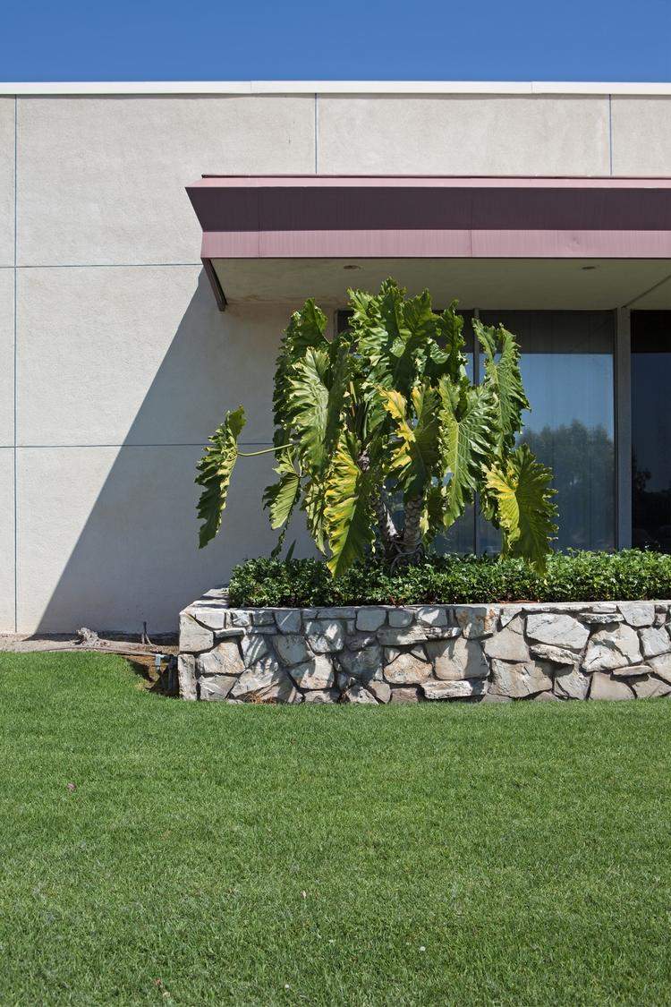 Planter, Medical Center, San Ga - odouglas | ello