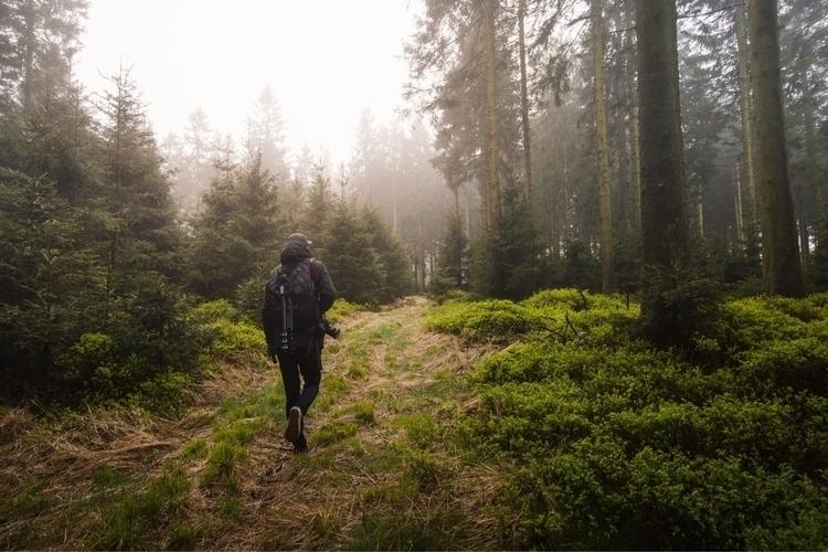 explore - nature, highfens, belgium - charlespacque | ello