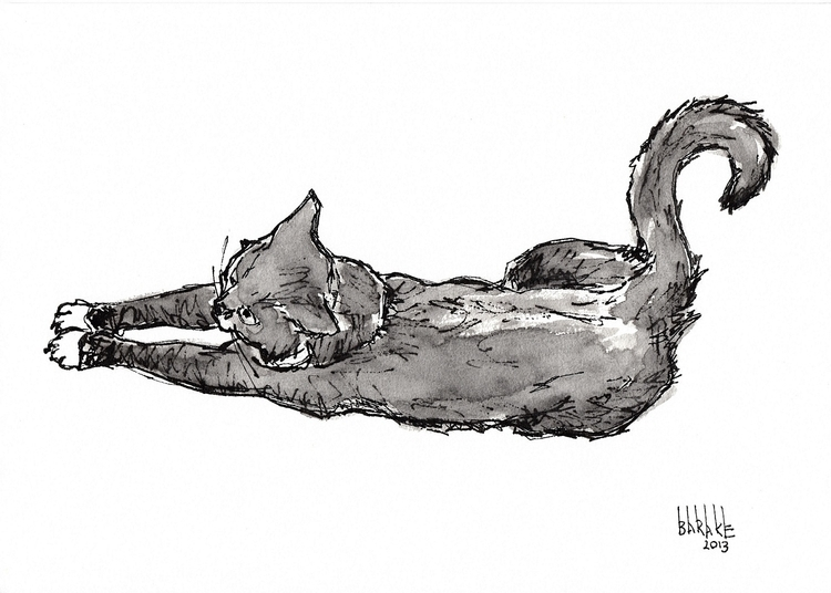 CAT - illustration, ink, cat, animals - barakesculptor | ello
