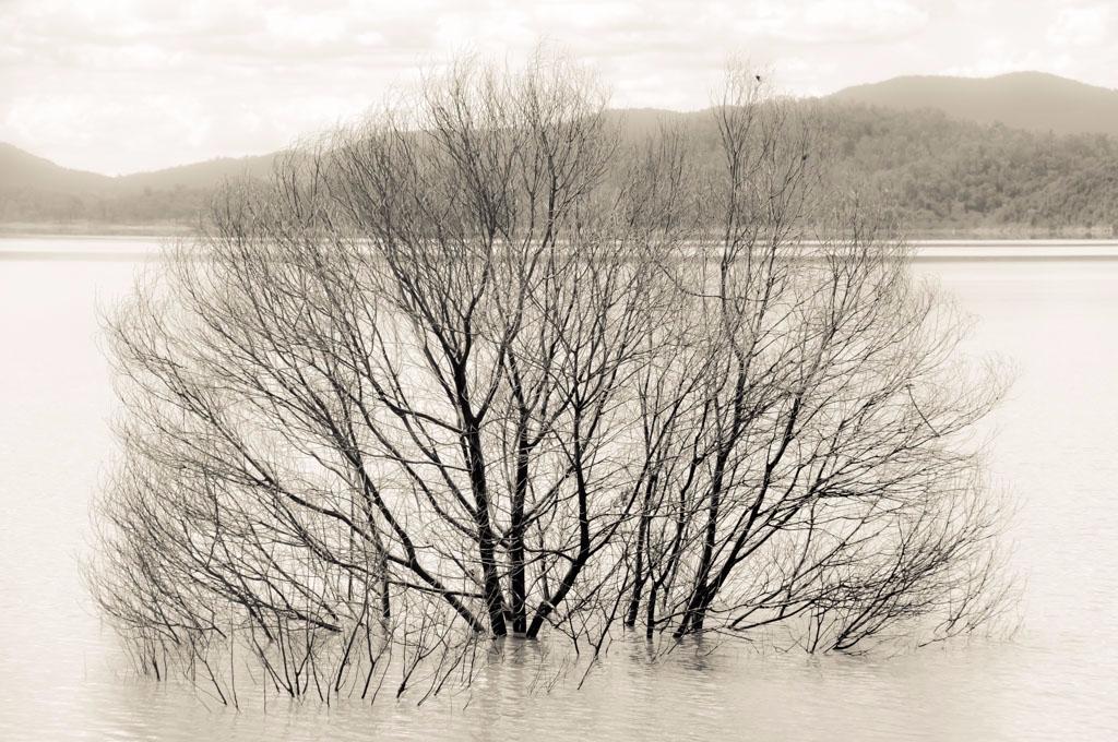 sunk - blackandwhitephotography - daphot | ello