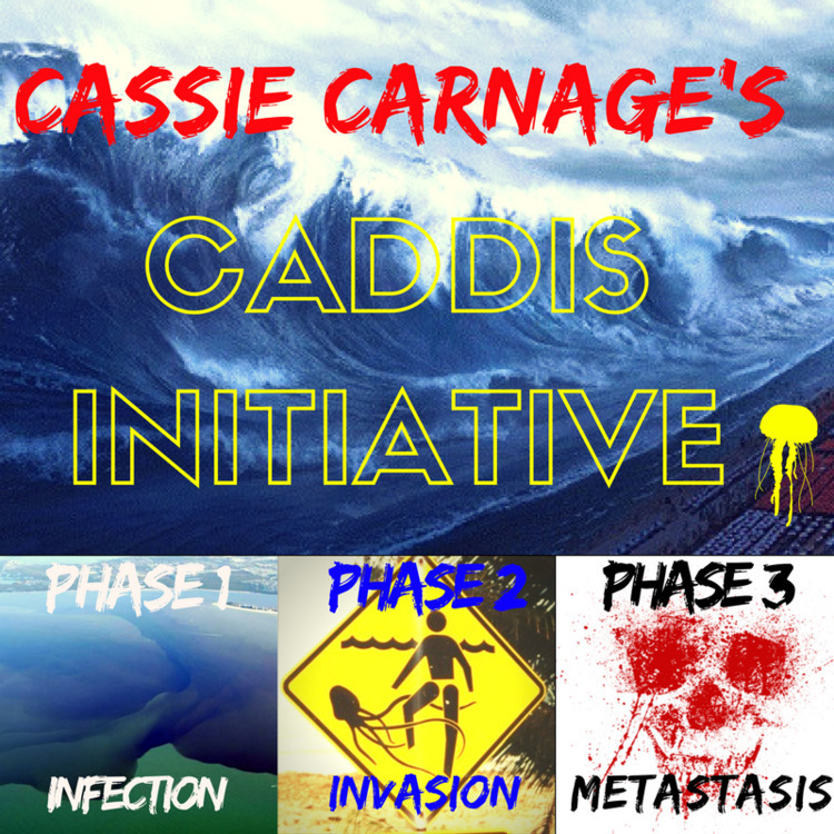 Caddis Initiative INVADING SUMM - cassiecarnage | ello