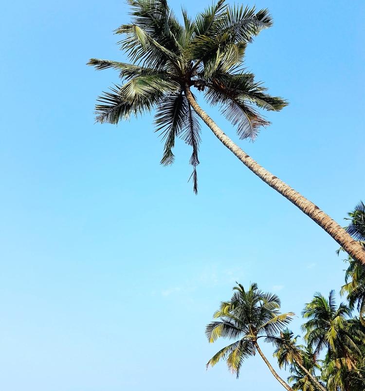 Goa, skyline - umez | ello