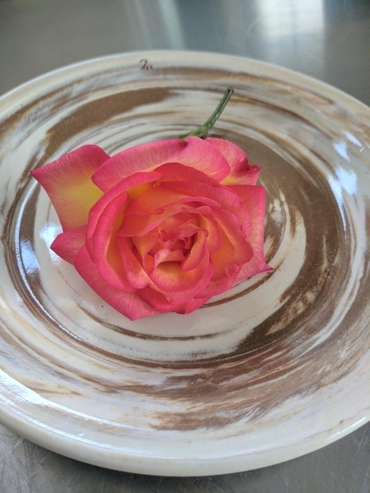 Collection rose - 2. - hillippieclayco | ello