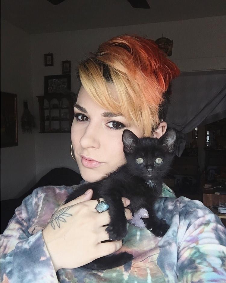 cats, Instagram, cat, blackcat - thesacreddimension | ello