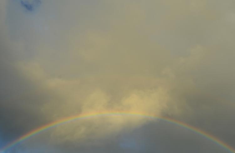 Rainbow Madeira - euric | ello