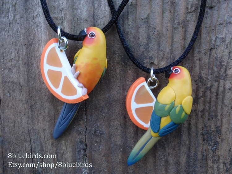 sun conures chilling orange sli - 8bluebirds_studio | ello