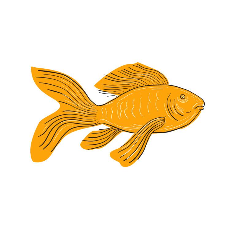 Swimming - Gold, Butterfly, Koi - patrimonio | ello
