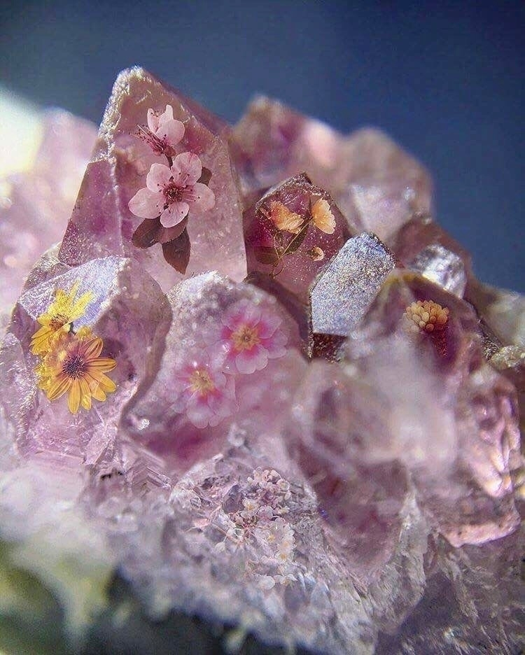 :cherry_blossom::sparkles::hibi - solarasgarden | ello