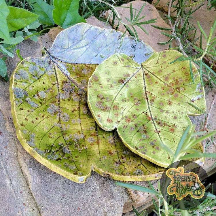 Finally, leaf dishes shop! love - olisny | ello