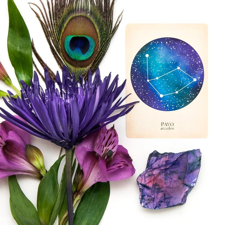Compendium Constellations: Cosm - blackandthemoon   ello