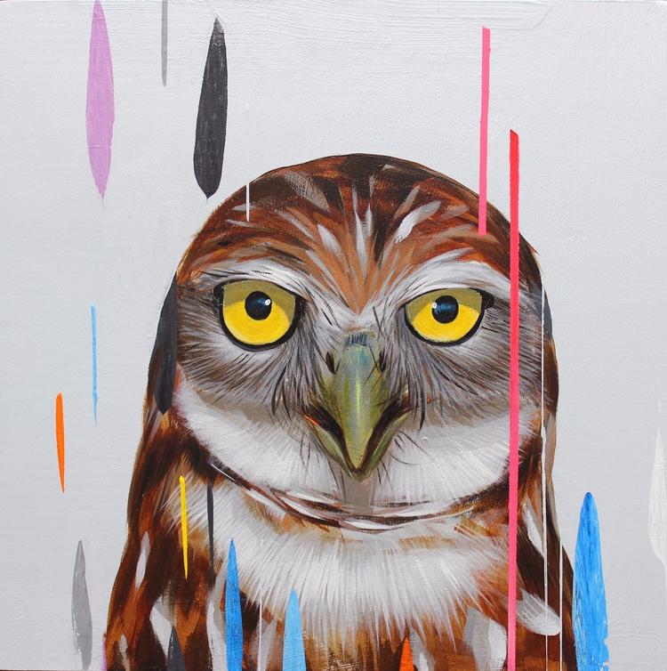 8X8 Burrowing owl - gonzalesfrank | ello