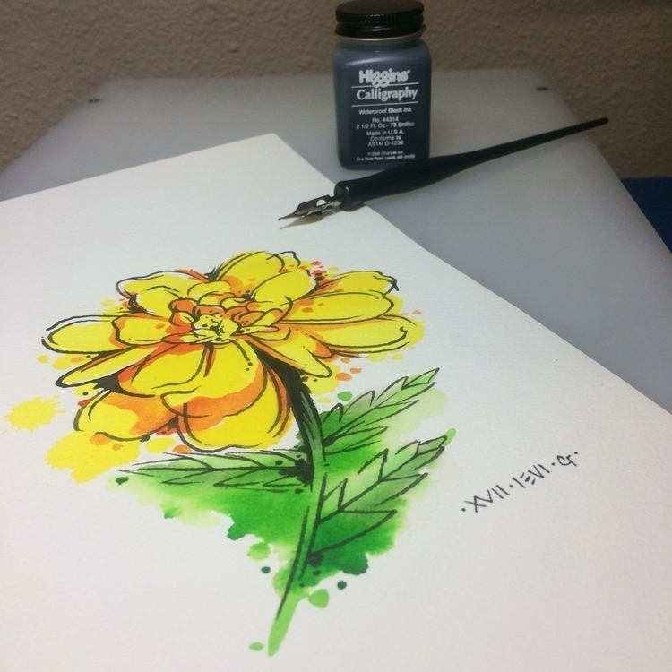 Marigold, watercolortattoo, design - levigreenacres | ello