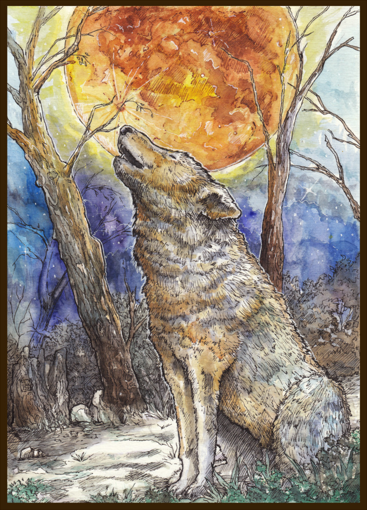 Call winter Moon - Watercolors  - malthus_wolf | ello