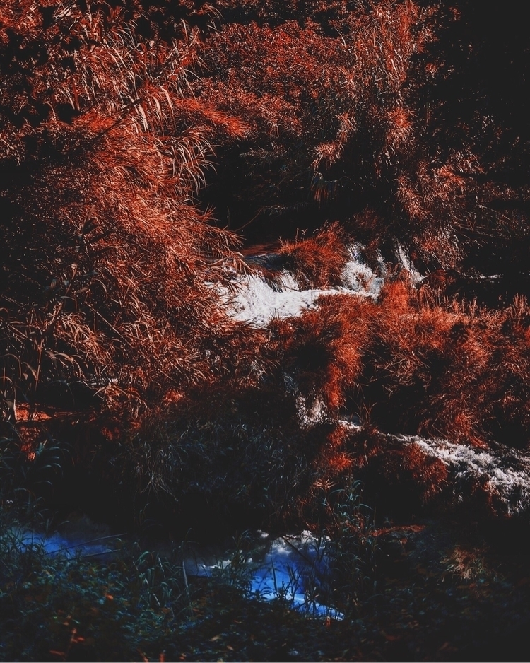 Chromefall - waterfall, river, forest - palegrain | ello