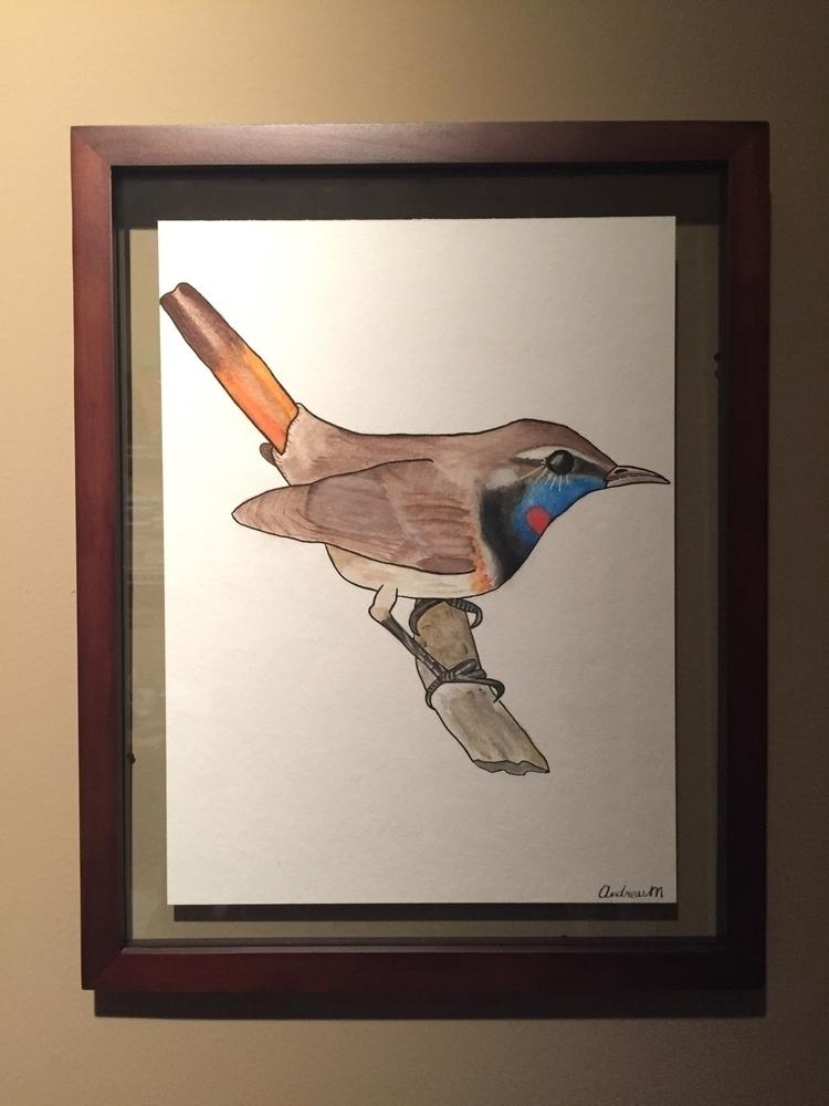 blue, throat, birdie, watercolor - wildflowerramblings | ello
