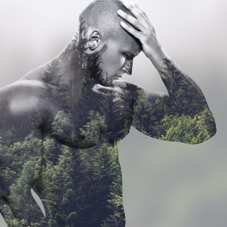 trees - torontocreatives | ello