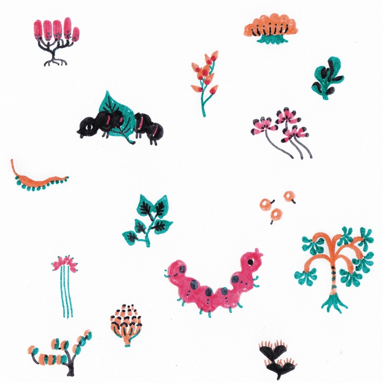 Flowers insects - illustration, drawing - yuhsuan | ello