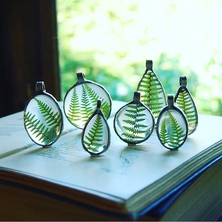 fern, woodland, terrarium, glass - verymeadow | ello