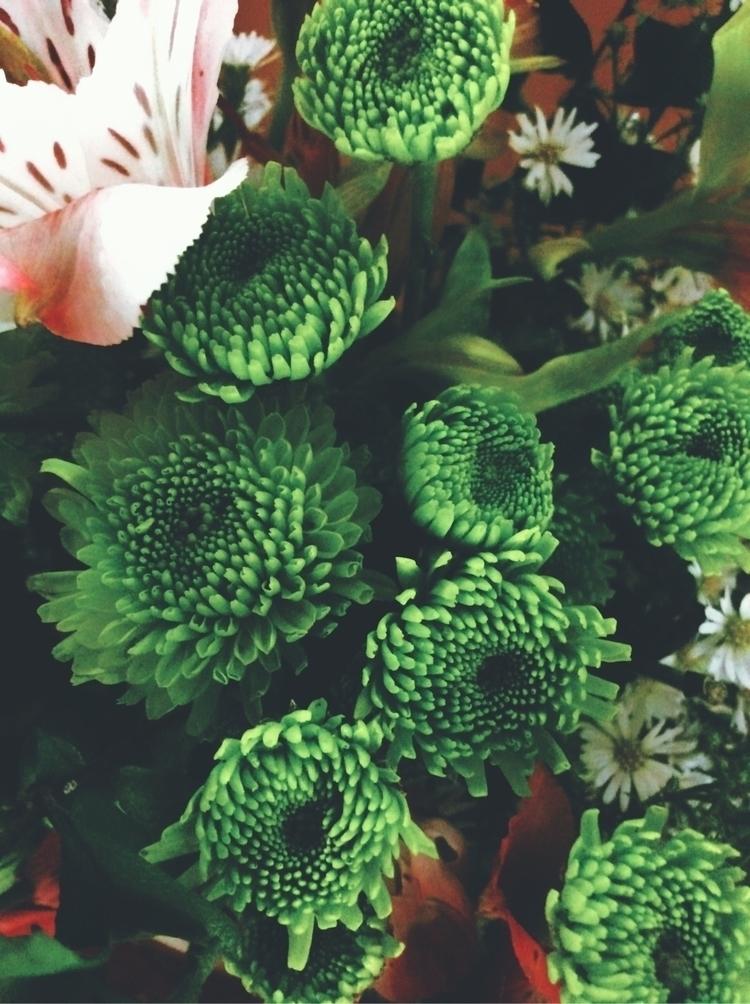 details, flower, bouquet, flowerarrangment - joshbedar | ello