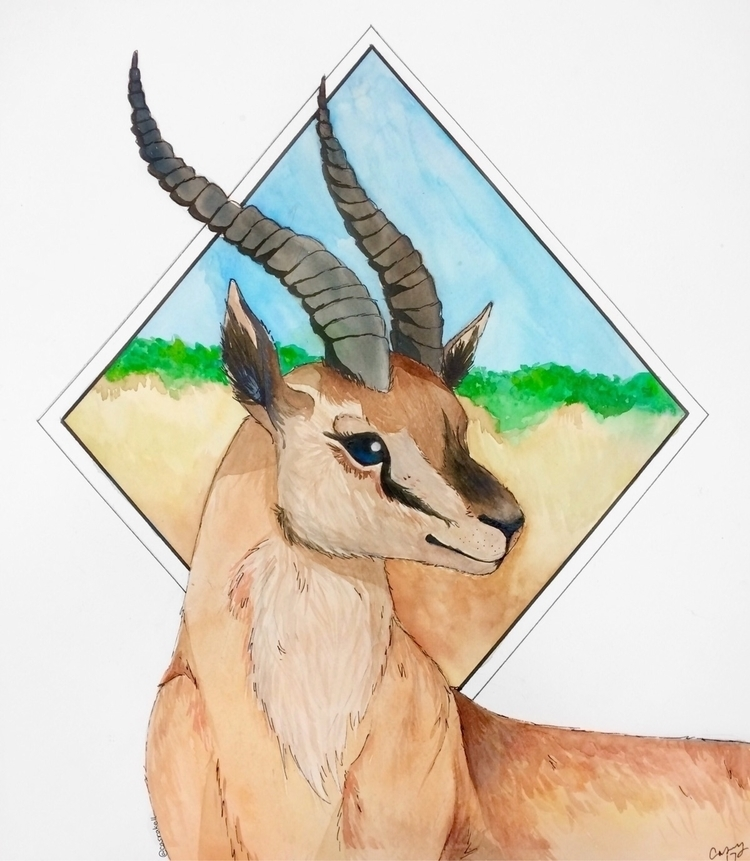 art, gazelle, watercolour - casrakell | ello