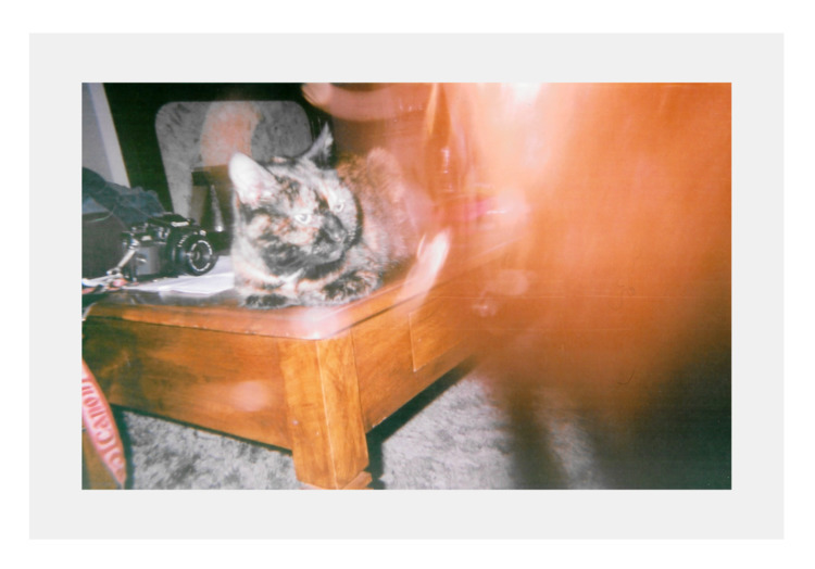 | place home - photography, disposable - jazminali | ello