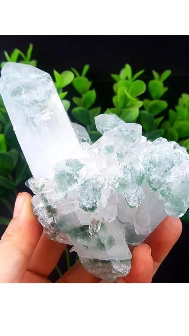 Link shop bio. Green Chlorite P - squatchrogers   ello