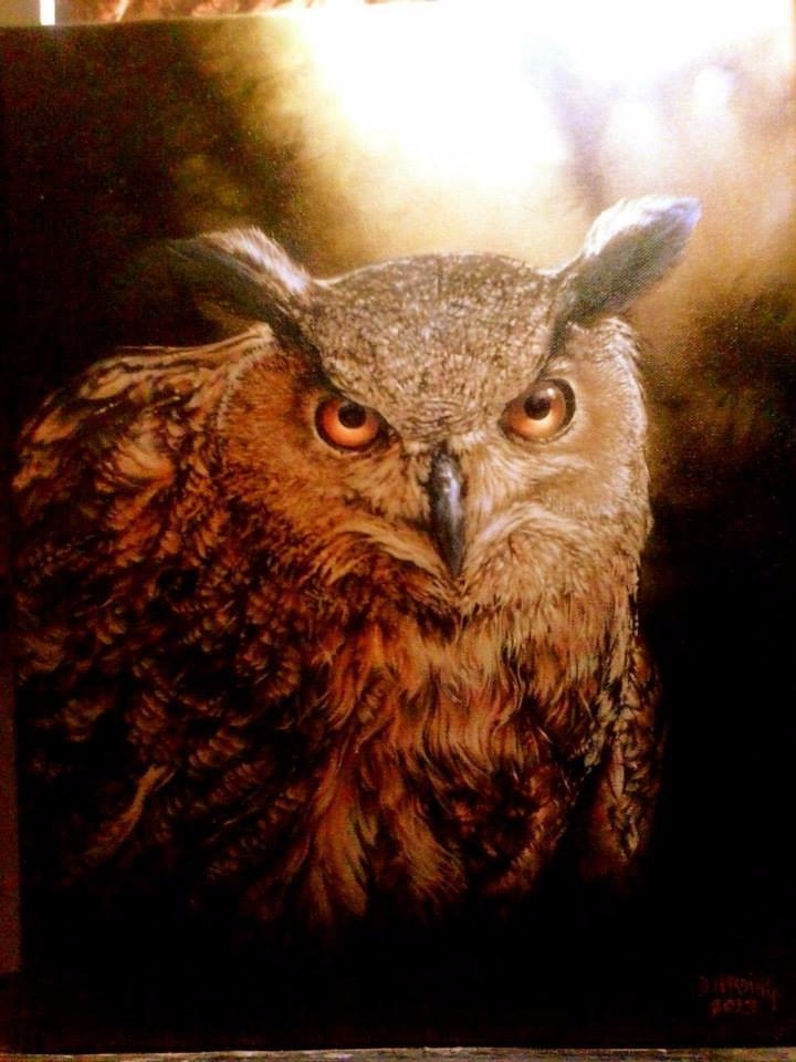 Owl 11x14 oil canvas - art, owl - danharding | ello