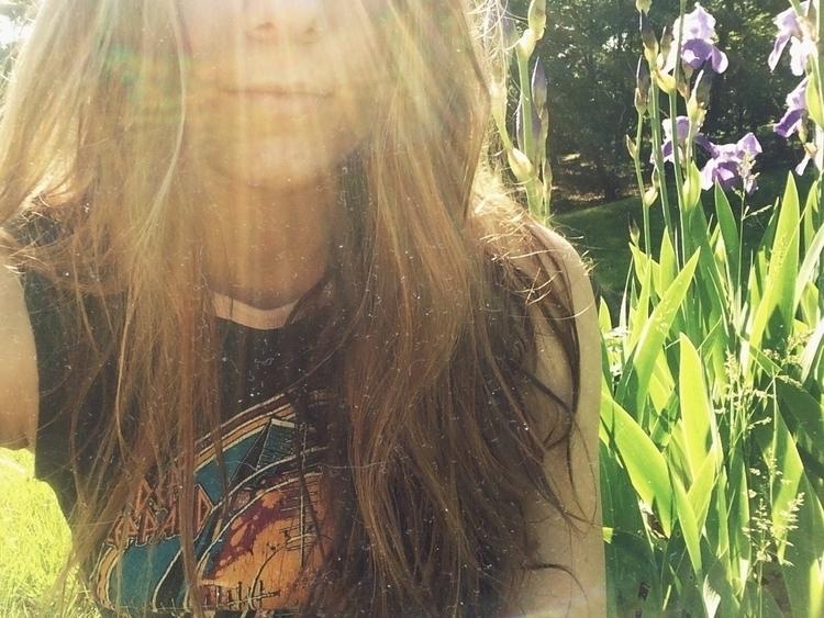 irises - flower, flowers, iris, garden - lavenderlight | ello
