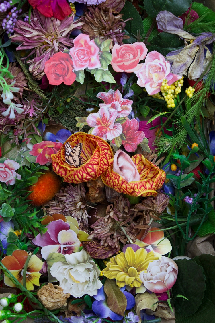 Collage 451 - photography, flower - franalvez | ello