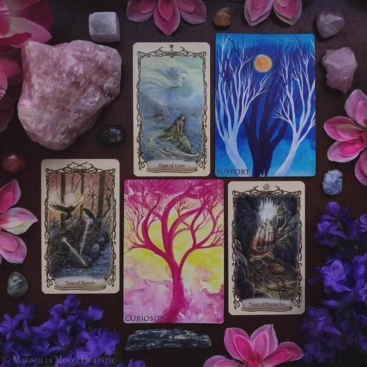 monthly reading June, magical f - magnoliamoonholistic | ello
