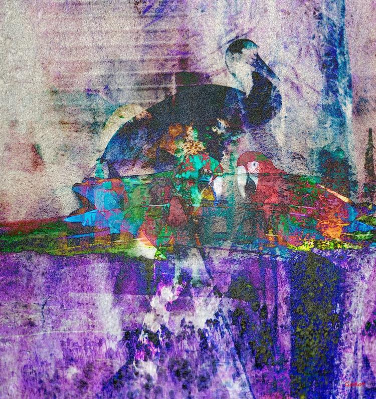 Artist: Gode Wilke Title: Kille - art-godot | ello