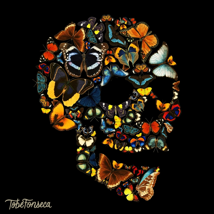 Butterfly Skull / Tobiasfonseca - tobefonseca | ello
