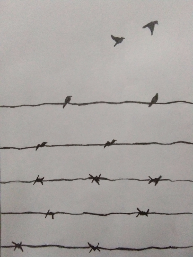 Freedom :) page check website d - kiridhruv | ello