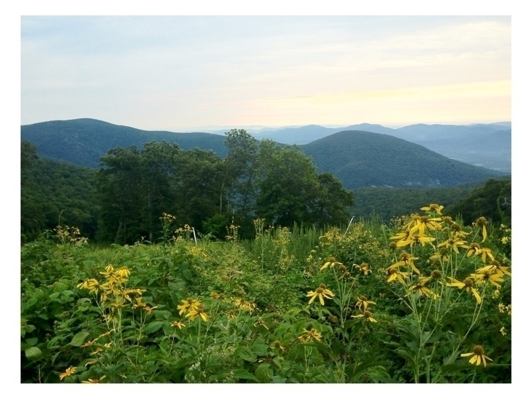 Happy Saturday Blue Ridge Mount - anchor_and_grace | ello