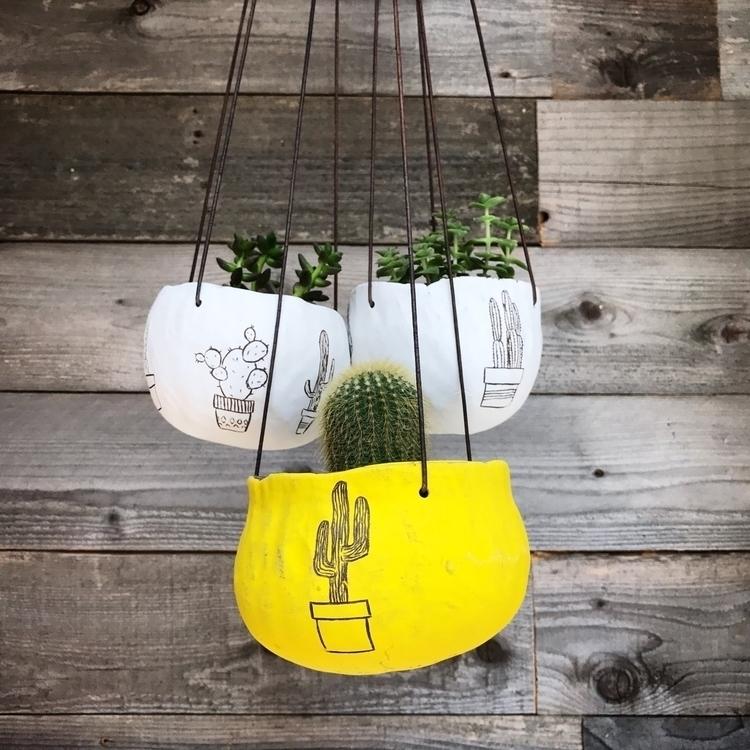 cacti hanging planters! grab pl - highyieldstudio | ello