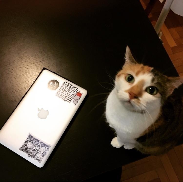 Kiki - stiker, macbookair, kitty - marco_b | ello