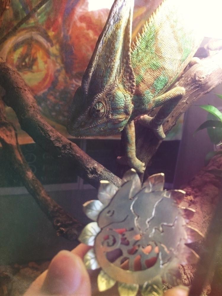 chameleon Arkhady inspires lot - mythcraftery | ello