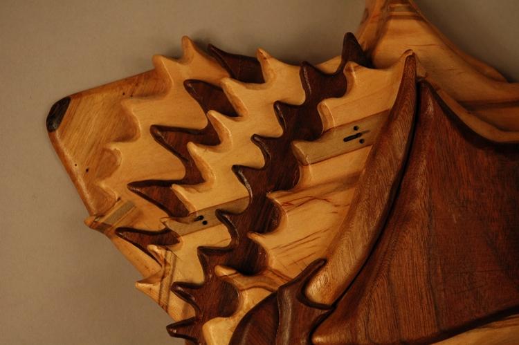 Conch Shell ambrosia maple waln - artbykaylabraden | ello