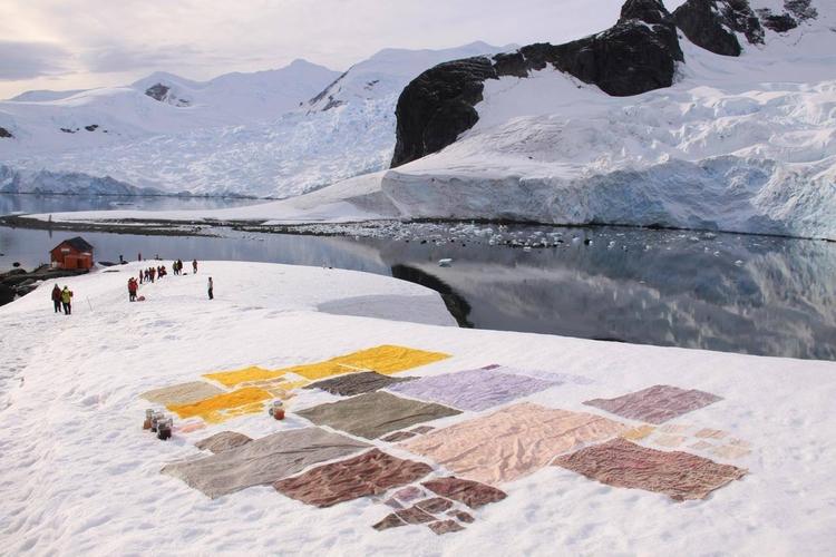 Flashback find Sugar Magazine - AntarcticBiennale - anaispaws | ello