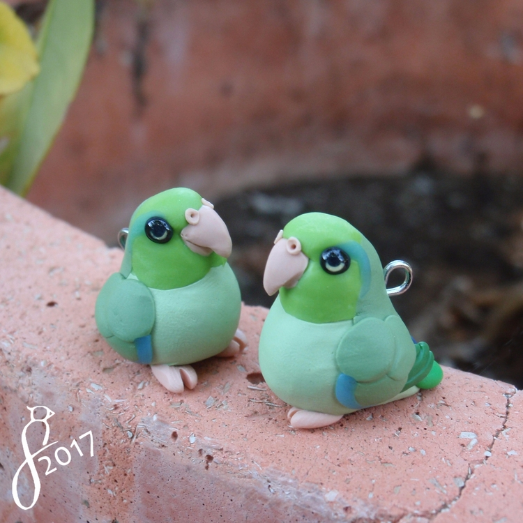 Parrotlets website Etsy Catch p - 8bluebirds_studio | ello