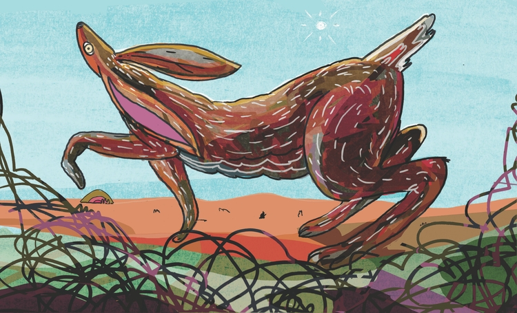 rabbit deer - illustration, drawing - dylansgriffith   ello