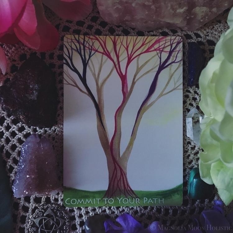 Deck: Soul Trees Discovery Card - magnoliamoonholistic | ello