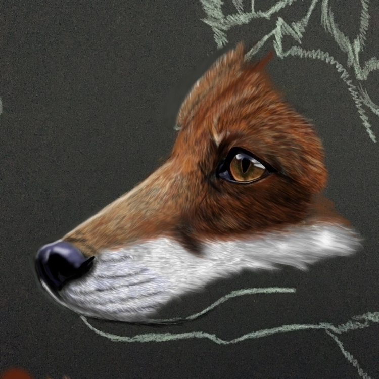 Current wip red fox! 🦊 - digital - tmootreyart | ello