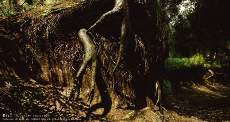 Roots 黒衣森:南部森林 より - FF14, FFXIV - flcvs | ello