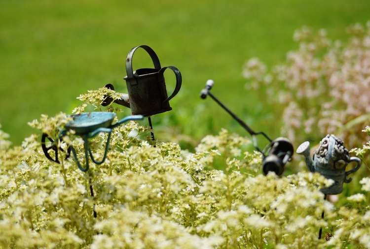 Garden Tools - Photography, nature - texaschris13 | ello