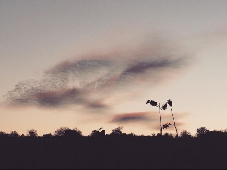 sky, trees, clouds, nature, travel - alexander_stiv | ello