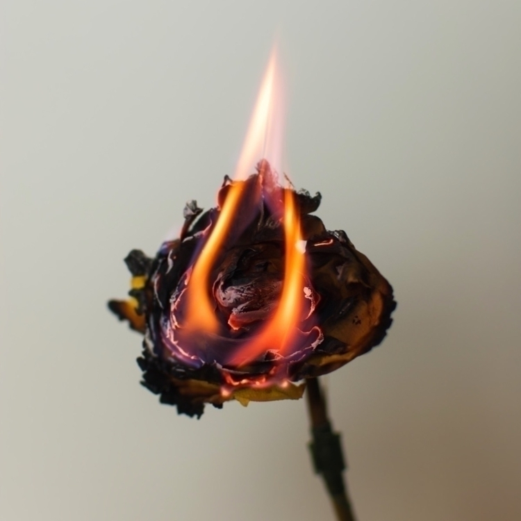 Reinventing - burn, fire, light - secretattack | ello