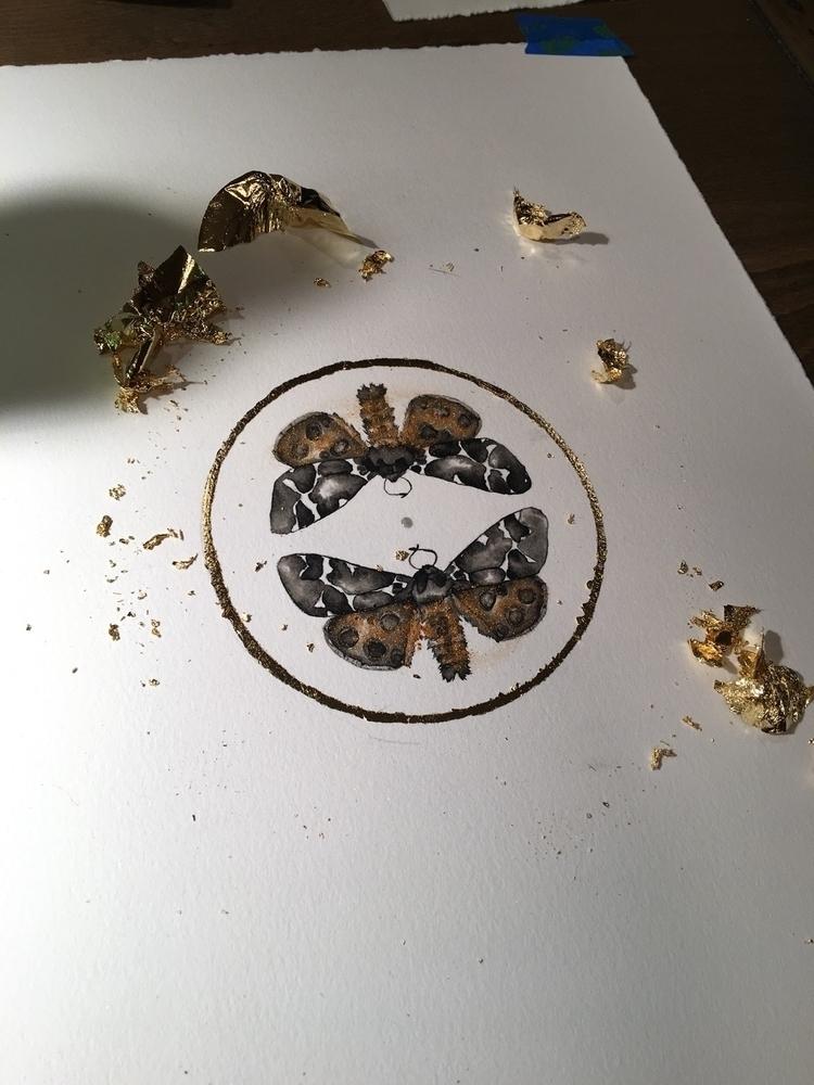 moth, entomology, insects, illustration - alexakarabin | ello